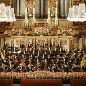 #njk2021 🎶 ✨ Prosit Neujahr! ✨ #repost @viennaphilharmonic 📸 (c) Dieter Nagl #newyearsconcert #neujahrskonzert #wienerphilarmoniker #ViennaPhilharmonic #nyc2021...