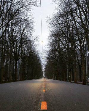 🚶♀️ . #dailywalk #vienna #austria #vienna_austria #justgoshot #igersaustria #igersvienna #lockdown #viennaonly #onlinevienna #ilovevienna #wienliebe Prater Hauptallee