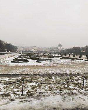 Snowy throwback❄️#vienna #viennaaustria #vienna_austria #viennagram #viennalove #viennablogger #viennagoforit #viennacity #wien #stadtwien #spaziergangdurchwien #wienliebe ...