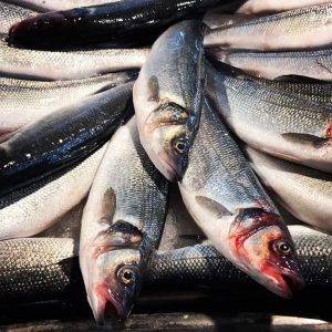 #NHMAblaufdatum #Blog Fish stocks in Europe are overexploited, the North-East Atlantic and thus ...