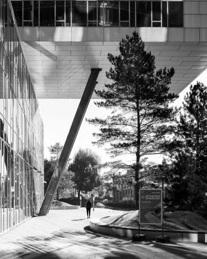 Concrete trees 📌 Viertel Zwei Campus, Vienna •⠀ •⠀ •⠀ •⠀ •⠀ •⠀ •⠀ •⠀ •⠀ •⠀...