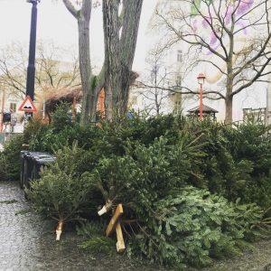 .... oh Tannenbaum.... #weihnachtenistvorbei #xmasisover #wien#vienna#xmastree#weihnachtsbaum #elefantenfutter