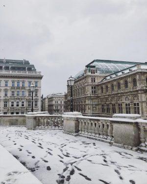 went for a little stroll🤍🌬 #vienna #viennatouristboard #snowy #snowyvibes #viennawurstelstand #viennastateopera #viennaalbertina #winter ...
