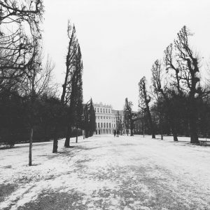 This week's Friday view of Schönbrunn #snow #winter #vienna #wien Schloss Schönbrunn