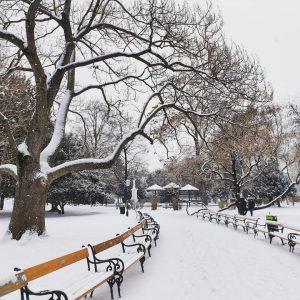 #flockdown About today ❄️💙❄️ Zeigt uns Eure schönsten Schnee-Fotos von Wien in den Kommentaren. #fhwienderwkw #fhwienwkw #FHWien...