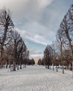 aufwachen, aus dem fenster schauen und den schnee feiern. dass wir dann noch vor dem frühstück eine...