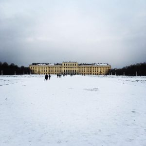 Schönbrunn. Winter #schönbrunn #schönbrunnpalace #schlossschönbrunn #wien #wienliebe #vienna #viennalove #winter #walking #spaziergang Schloss Schönbrunn