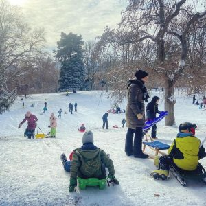 Drei, zwei, eins, Los! #schnee #bob #bobfahren #snow #rodelberg #rodeln #schlitten #kinder #children #türkenschanzpark #park #outdoors #sport...