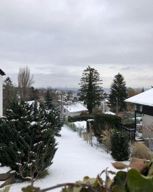 #frozen #schneewienchen #morningwalk #snowwalk #keepwalking #wilhelminenberg #ottakring #meinotk #igersaustria #igersvienna #healtheworld🌎