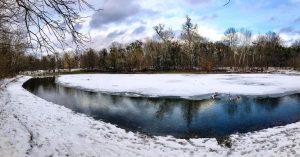 Snow ❄️ Day ☃️ in Vienna #praterhauptallee #wienerprater #heustadlwasser #winterwalk #snowdayinvienna #frozen #olafishappy #reflection #skyreflection #naturephotography #natureinthecity...
