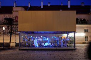 Beim nächsten Abendspaziergang einfach mal einen Abstecher zu uns machen und die neue Ausstellung LUMEN in der...