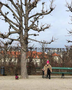 ... Belvedere Gardens, Vienna