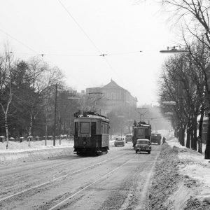 So sieht ein normaler Winter in Wien aus ☃️ Seit den 1950er-Jahren ist die durchschnittliche Temperatur in...