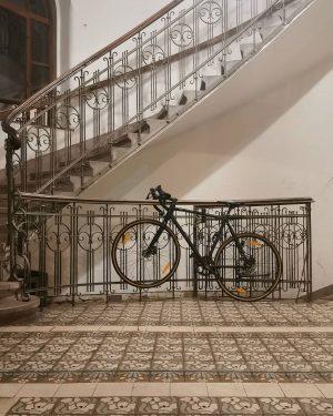 Fahrrad-Somatolyse #wien#vienna#döbling #igersvienna#igersaustria #bicycle#bicyclelove #tarnung#ihaveathingforbikes #treppenhaus#staircase #treppenhausliebe#meinwien #fahrradliebe#fahrrad #jugendstil#artnouveau #wieneralltag#wienliebe #patternlove#pattern #muster#tiles#fliesenliebe #igersvienna#igersaustria ...