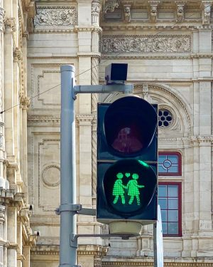 Aren't these traffic lights in Vienna just adorable?😍 I think every city should ...