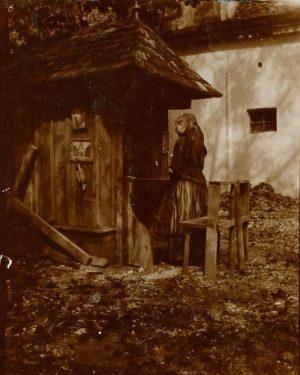 In den letzten 120 Jahren tauchte mehrmals die Idee auf, aus dem Volkskundemuseum ein Freilichtmuseum zu machen....