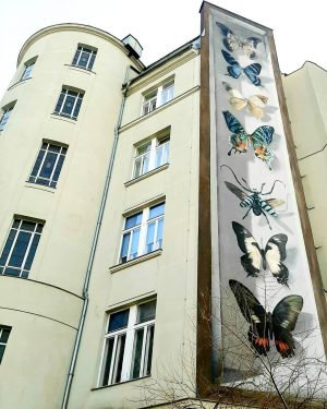 #Vienna #streetart #energy #goodday #sunnyday #graffitiart #art #culture #photography 😀