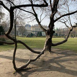 Viyana parkları... . . . . . . . #avusturya #viyana #kültürturu #şehirdedoğa ...