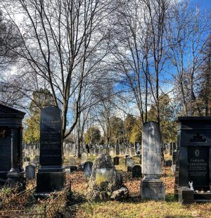 Vienna • Zentralfriedhof (February 2021) __________ #vienna #wien #zentralfriedhof #jüdischerfriedhof #graveyard #cemetery #cemeterylovers #lightandshadow #skylovers #cloudlovers #architecture...