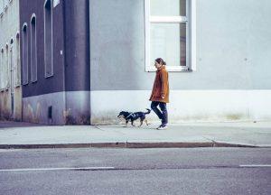 a walk with the dog #wienliebe #wien #vienna #vienna_city #wienerblicke #igersaustria #igerswien #igersvienna #viennastreetphotography #streetphotography #streetphotographer #streetgrammer...