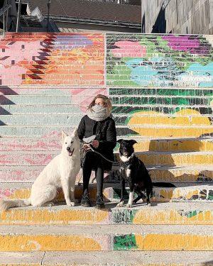 immer was los mit den mäusen 🤍 wien, du bist so schön! #mumok#sunshine#museumsquartier#vienna#wien#love#art#warhol#andywarhol#artsy#dog#doglove#dogmom#hometown#citygirl#dogsquad#tb MQ – MuseumsQuartier Wien