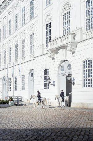 Sunday Stroll, Vienna, AT [Fuji X100V] . . . . . #grainisgood #lensculture #somewheremagazin #rentalmag #nowherediary #ifyouleave...