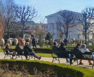 WienGo ✅ Die Alte Normalität Volksgarten ➡️ LINK ZUM WienGo ONLINE SHOP IN BIO ✅ _________________ #WienGo...