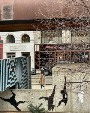 Monkey Park 🙈🙉🙊 Artist: unknown #streetart #streetartvienna #streetphotography #graffiti #graffitiart #urbanphotography #urbanart #stencilstreetart ...