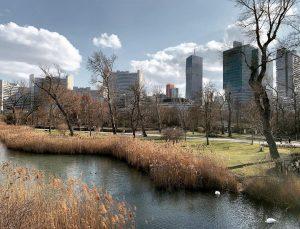 Almost Central Park... #almostweltreise#almostnewyork#almostcentralpark#vienna#austria#newyork#usa#spring#arthistorian#koeniglaurin @wienmuseum