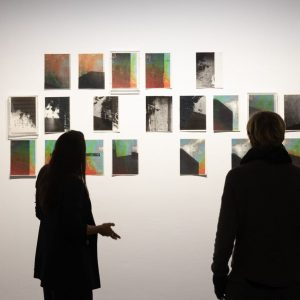 Tanja Widmann investigates the art market and the speculation industry by means of an essayistic excursion.The starting...