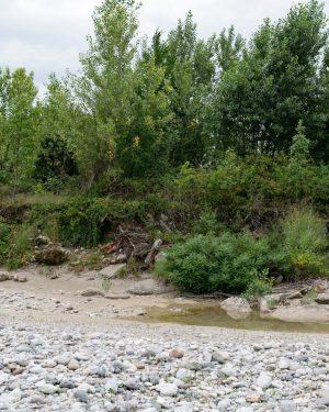 UNTER DIE LUPE GENOMMEN 🔎 Wenn man an den italienischen Wildfluss Tagliamento denkt, hat man mit seinem...