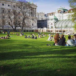 #Frühlingsgefühle #springawekening .#🌿🌸🌱🌼 #wien #burggarten #burggartenwien #vienna #vienne #schmetterlingshaus Burggarten