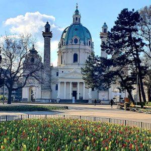 Tulips Everywhere ⚘🌷 Karlskirche