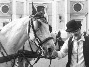 #igersvienna#makefiakerfahrengreatagain#citylife#wienliebe#viennaridingschool#fiaker#blackandwhitephotography#memories @igersaustria @ridingdinneraustria Wien, Österreich