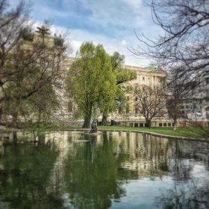 Endlich 🌿🌱💚💚💚🌱🌿! . . #frühling #spring #printemps #primavera #green #greenleaves #grün #park #ententeich #burggarten #endlichfrühling #finallyspringtime #enfinprintemps...