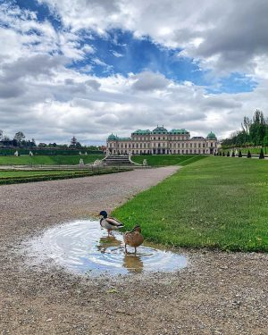 Sundays in Vienna 🦆 photo: @vibeofvienna #streetphotographer #spring #may #citylife #architecturephotography #wienliebe #city #stadtparkwien #igersaustria #streets #photography...