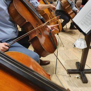 Es wird musiziert! 🤩🎶🎻 #musikverein #wienermusikverein #musikvereinwien #igersvienna #wien #vienna #musiclover #austria #music #art #allesgoldwasglänzt #classicalmusic #goldenhall...