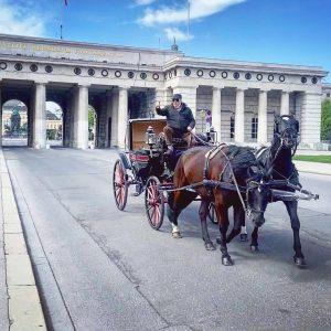 Kutscherfreuden #fiaker #kutscher #pferd #pferdefotografie #burgtor #wien #vienna #igersvienna #makefiakerfahrengreatagain #fiakerfahrt #heldenplatz #outdoors ...