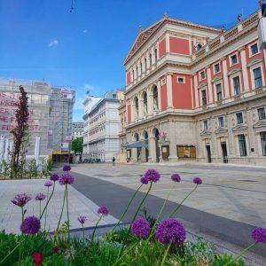Musikverein #vienna #wien #musikverein #wienwiennurduallein #wienliebe #cityofmusic #austria #musikvereinwien #concerthall #purpleflowers #blumenbeet #stadtspaziergang #kultur Vienna