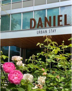 Unser Daniel Garten erstrahlt schon in wunderschönen Farben 🥰🌸💐 Etwas fehlt aber noch : unsere Gäste! 😔...