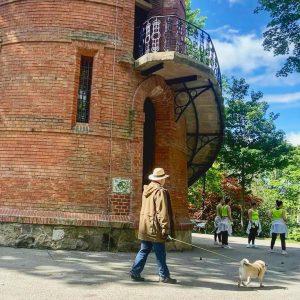 A Walk in the Park #park #hund #dog #gassi #gassigehen #mannmithut #tänzer #dance #paulinenwarte #türkenschanzpark #währing #wien...