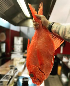 Alfonsino : Amazing fish 🐠 🐠 #3michelinstars #amadorlovesyou #restaurantamador Restaurant Amador