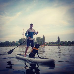 First SUP of the year on a baking hot Sunday ☀️💦 #Blacklab #blacklabrador ...
