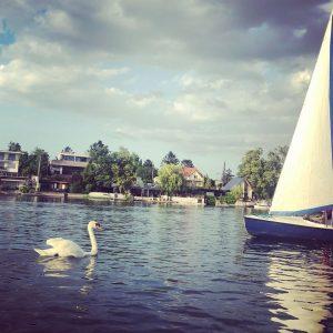 Alte Donau 💕⛵️ #altedonau #evening #goodtimes #perfectday #summervibes Wien, Österreich