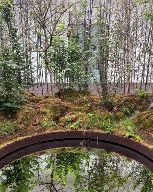 • INSTA SWAP FOR CHANGE MIT DEM MAK! 🔄🌍 Heute haben wir keinen Wald besucht, sondern ein...