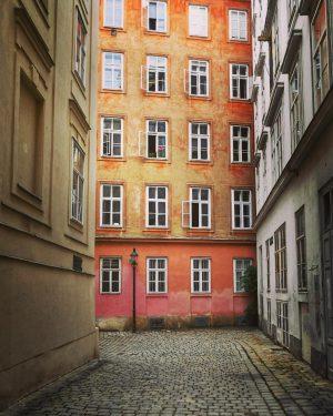 Windows 20 #wien #vienna #stephansdom #mölkersteig #bastei #fenster #windows #wienliebe #ilovevienna #architecture #fassadenfotografie #sommerinwien #hotinthecity #faltersbestofvienna #stadtwien...