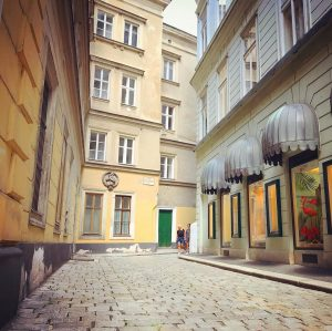 """this little alley in Vienna's city center has a quite charming name: it's called """"Kleeblattgasse"""" (cloverleaf alley)..."""