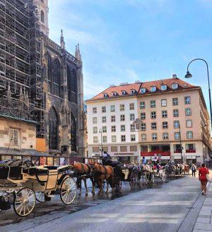#vienna#stephansplatz#building#sunny#sunlight#stephansdom#city#photography#aesthetic#cityaesthetic#innenstadt#justlife#chillin#austria#classy#happyplace#travelphotography#horses#carriages#fiaker#sightseeing Stephansdom, Vienna