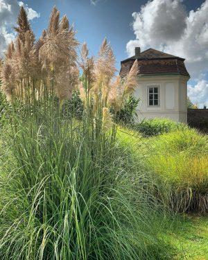 Мягкое солнце:) Botanischer Garten der Universität Wien