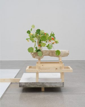 """#DanhVo at @viennasecession 🌺 """"In August 2020, my colleague Hans Weinberger and I ..."""